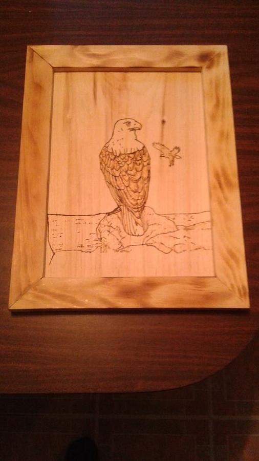 Mr. Eagle - Woodworking Project by Boyne Drover