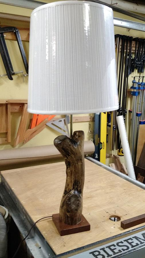 Driftwood table lamp - Woodworking Project by Brian