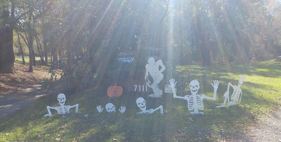 skeletons - Woodworking Project by Wheaties  -  Bruce A Wheatcroft   ( BAW Woodworking)