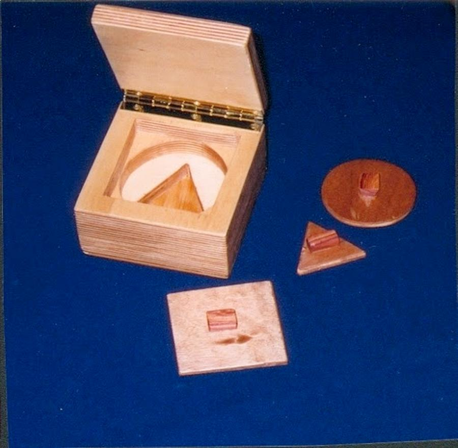 Simple Shapes Puzzle for Toddlers - Woodworking Project by BarbS