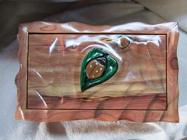 Ladybug Box - Woodworking Project by JoeyG