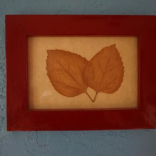 Pressed leaves in frame. - Cake by Madts