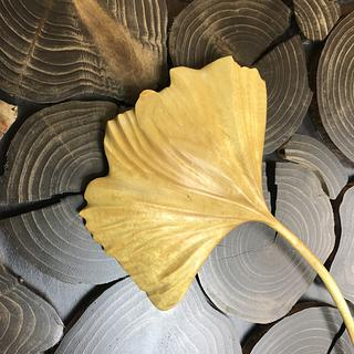 Falling Ginkgo leaf - Woodworking Project by Ellenski