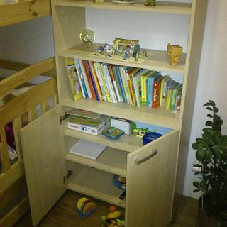 Cupborad/bookcase - Woodworking Project by Michal Bulla
