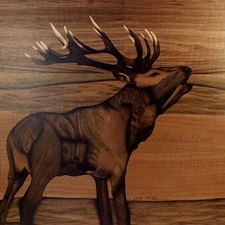 Deer marquetry - Woodworking Project by Andulino