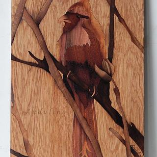 Cardinal bird marquetry - Project by Andulino