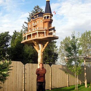 Extreme Birdhouses  - Cake by John L