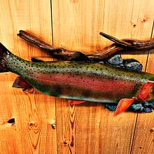 Carved Cutthroat Trout - Woodworking Project by Danny Cowan