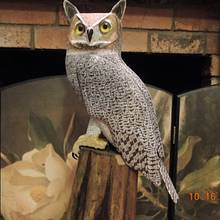 """Great Horned Owl""    ...   carving. - Woodworking Project by Rolando Pupo"