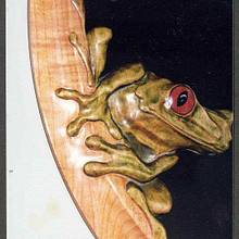 Tree frog - Woodworking Project by WestCoast Arts