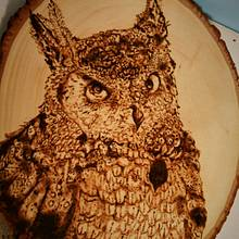 Large Owl Portrait - Woodworking Project by CharleeAnn