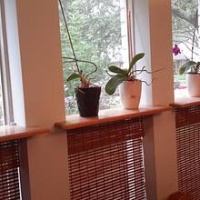Orchid Shelves. - Woodworking Project by Madts