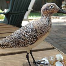 Standing Sandpiper - Woodworking Project by Rolando Pupo