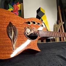 Customized Acoustic Guitar - Woodworking Project by Xylonmetamorphoun