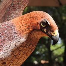 Red Tail Hawk  wood carving - Woodworking Project by Rolando Pupo