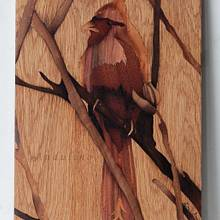 Cardinal bird marquetry - Woodworking Project by Andulino