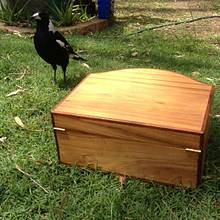 Curved Front Box, and Magpies! - Woodworking Project by RobsCastle