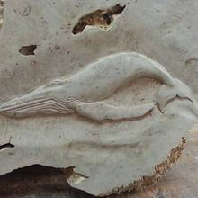 Whale carving - Woodworking Project by WestCoast Arts