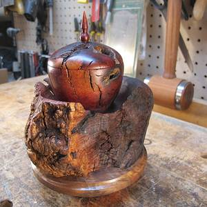 Emerging From The Chrysalis  - Woodworking Project by Lew
