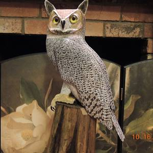 """""""Great Horned Owl""""    ...   carving. - Woodworking Project by Rolando Pupo"""