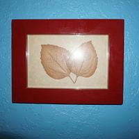 Pressed leaves in frame. - Woodworking Project by Madts