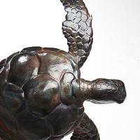 Sea Turtle - Project by WestCoast Arts
