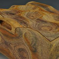A Cocobolo Sculpted Box