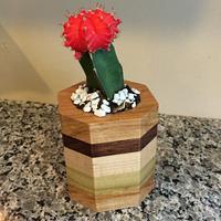 Wooden Flower Pots  - Woodworking Project by Leldon Maxcy