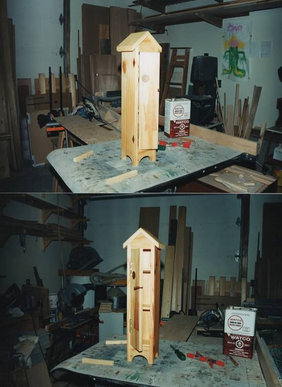 A bit of whimsy - Woodworking Project by Narinder Jugdev