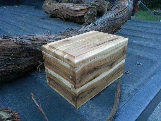 Vine Box - Woodworking Project by Steve66