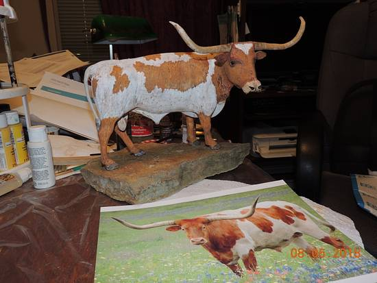 Tx Longhorn - Woodworking Project by Rolando Pupo