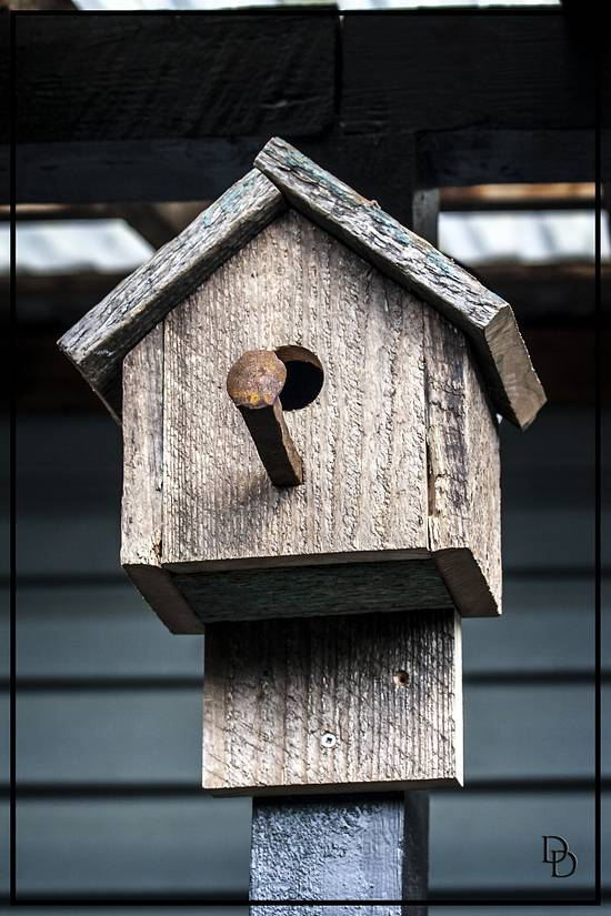 Bird Houses - Woodworking Project by Railway Junk Creations